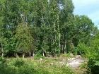 lunar-wood-27-06-10-061