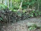 Dead Hedge Around Toilet Area