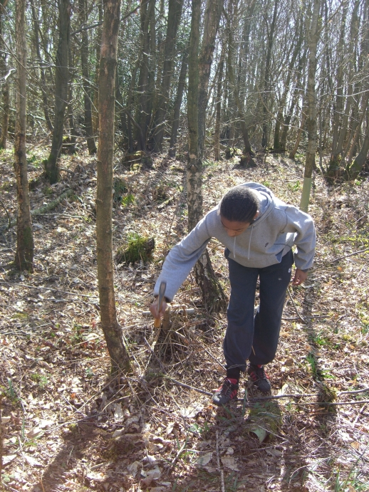 woodland-weekend-01-04-12-030